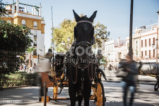Carriage with a horse in Seville, Spain