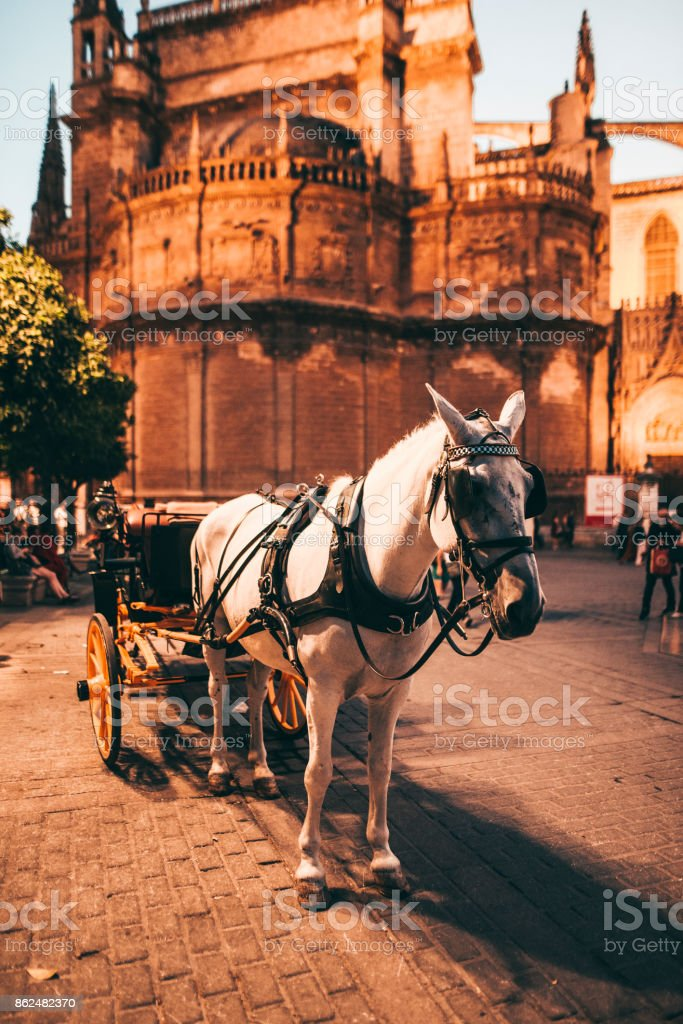 Horse Carriage in Seville, Spain stock photo