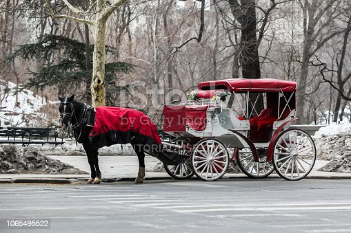 NEW YORK, NY, USA -  FEBRUARY 14, 2015: A horse carriage near Central Park  seen  in New York City in winter season
