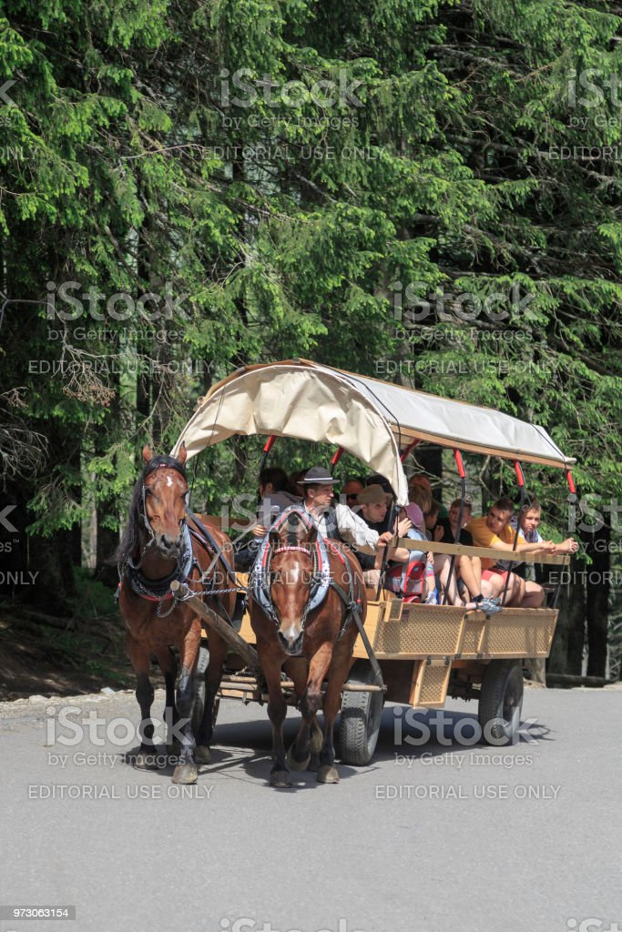 Horse carriage on road to Morskie Oko, Poland stock photo