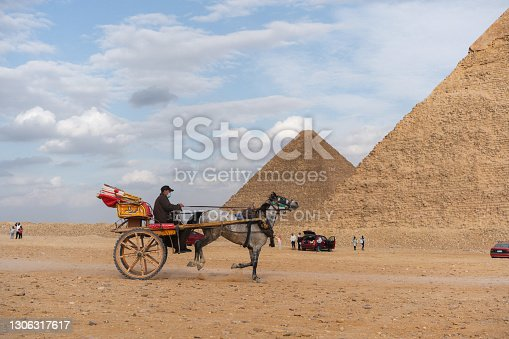 Horse carriage on the background of  Giza pyramids at sunset