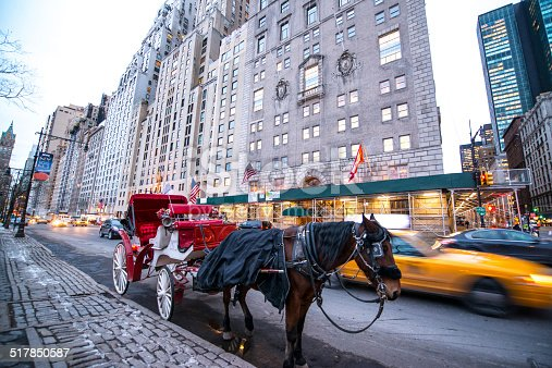 Horse Carriage waiting for passengers near Central Park, NYC