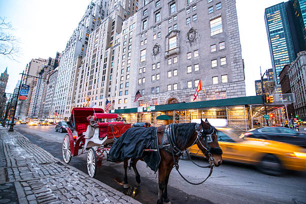 horse carriage waiting for passengers near central park, nyc - 載客馬車 個照片及圖片檔