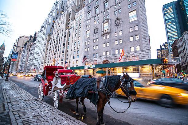 pferdekutsche die auf passagiere warten in der nähe von central park, new york city - pferdekutsche stock-fotos und bilder