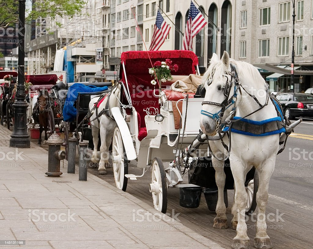 Horse Carriages stock photo