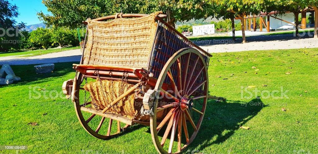 Carro del caballo en el jardín - foto de stock