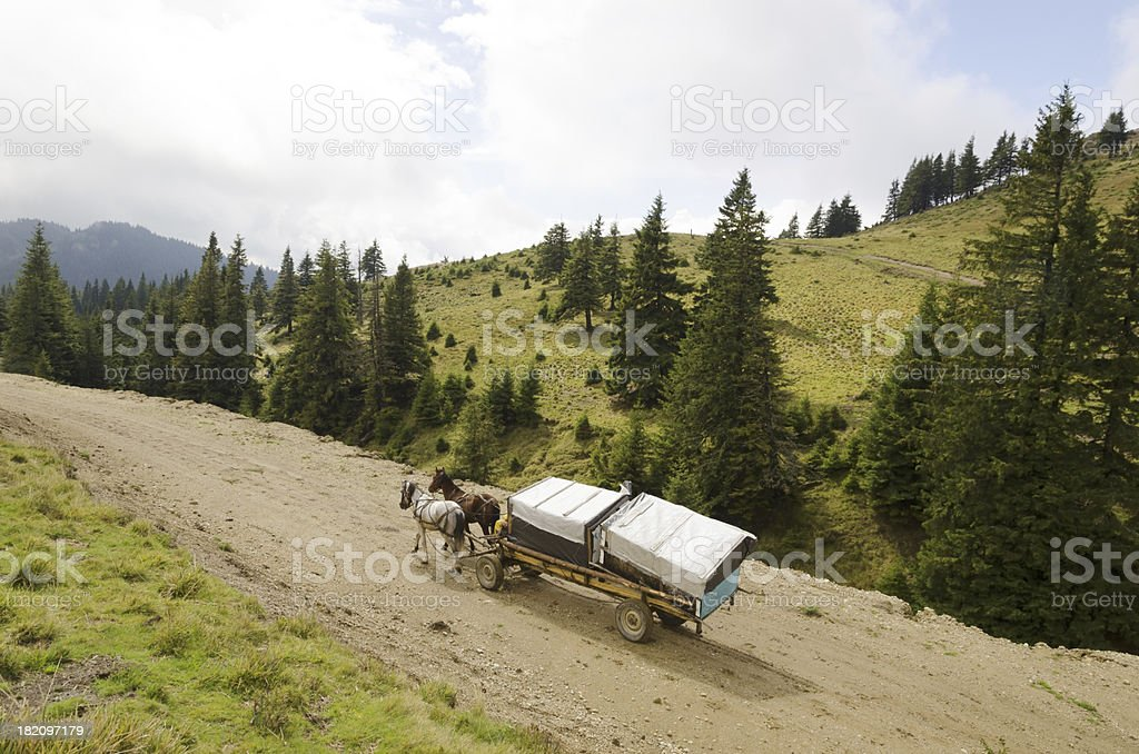 Horse cart in mountains stock photo