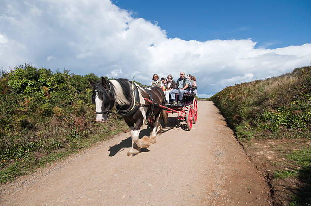 Horse & Cart stock photo