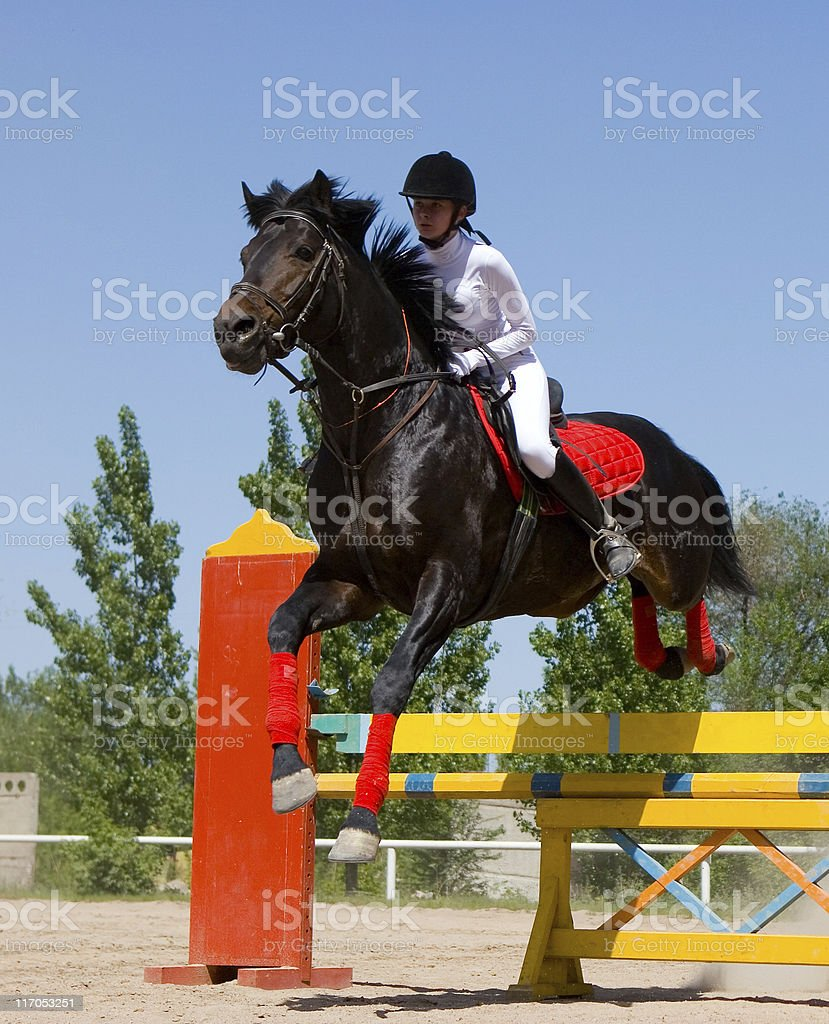 Horse clearing a jump. Horse's contest  Athlete Prilepskaya Irina stock photo