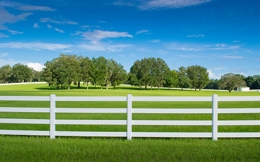 White fencing in a horse paddock in Ocala, Florida with green grass, oak trees and blue sky.