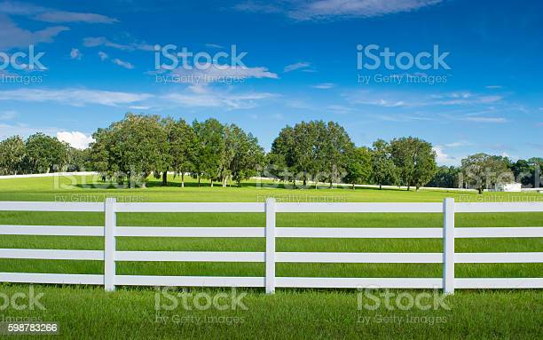 Photo of Horse Country in Ocala, Florida