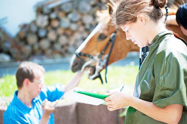 Horse dentists picture id170533228?b=1&k=6&m=170533228&s=612x612&w=0&h=jk7u7yr9vkmoofvg wyavjlefj2ytigj5gpv1emgae0=