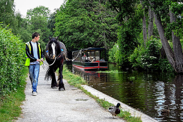 Horse drawn boat, Llangollen, North Wales stock photo
