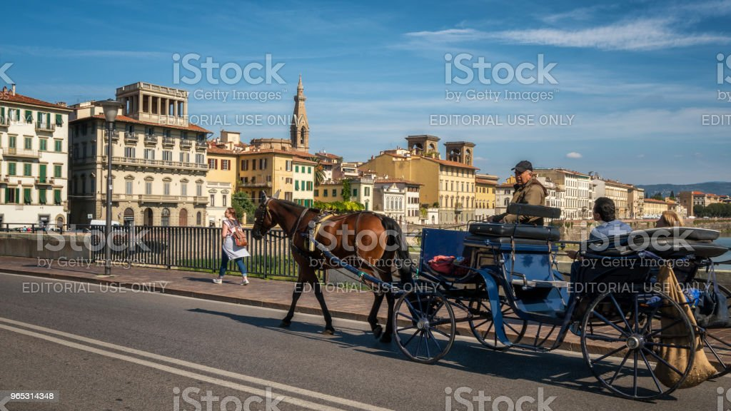 Horse drawn carriage travels in Florence, Italy. royalty-free stock photo