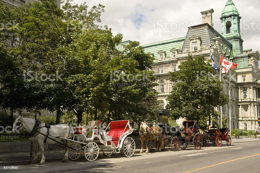 Horse drawn carriages in front of City Hall royalty-free stock photo