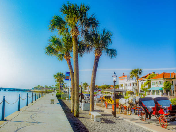 Horse drawn carriages line road in St. Augustine, Florida (P) stock photo