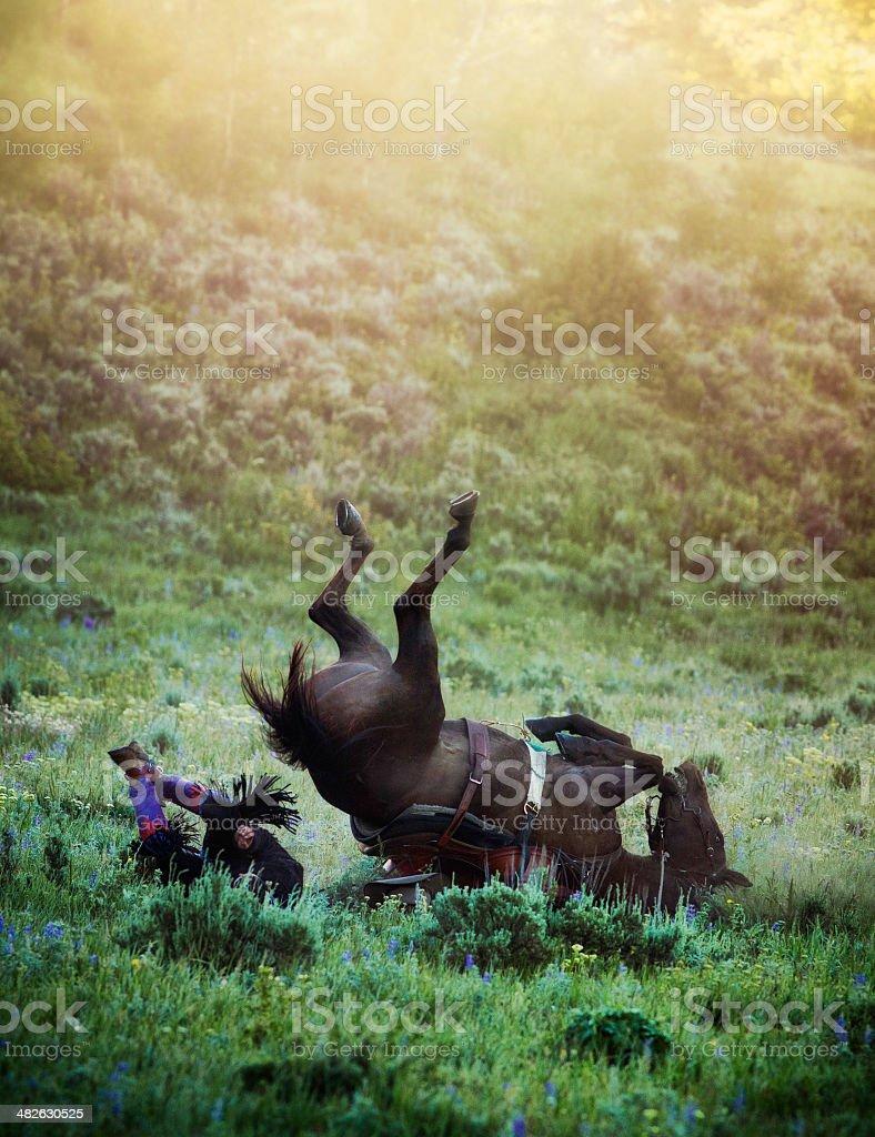Horse Fall stock photo