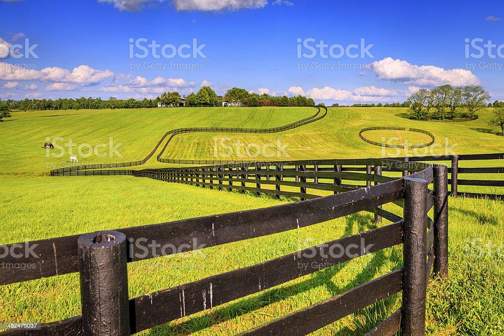 Horse Farm Fences Stock Photo Download Image Now Istock