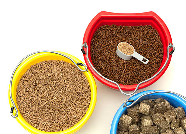 Horse Feed and Supplements stock photo