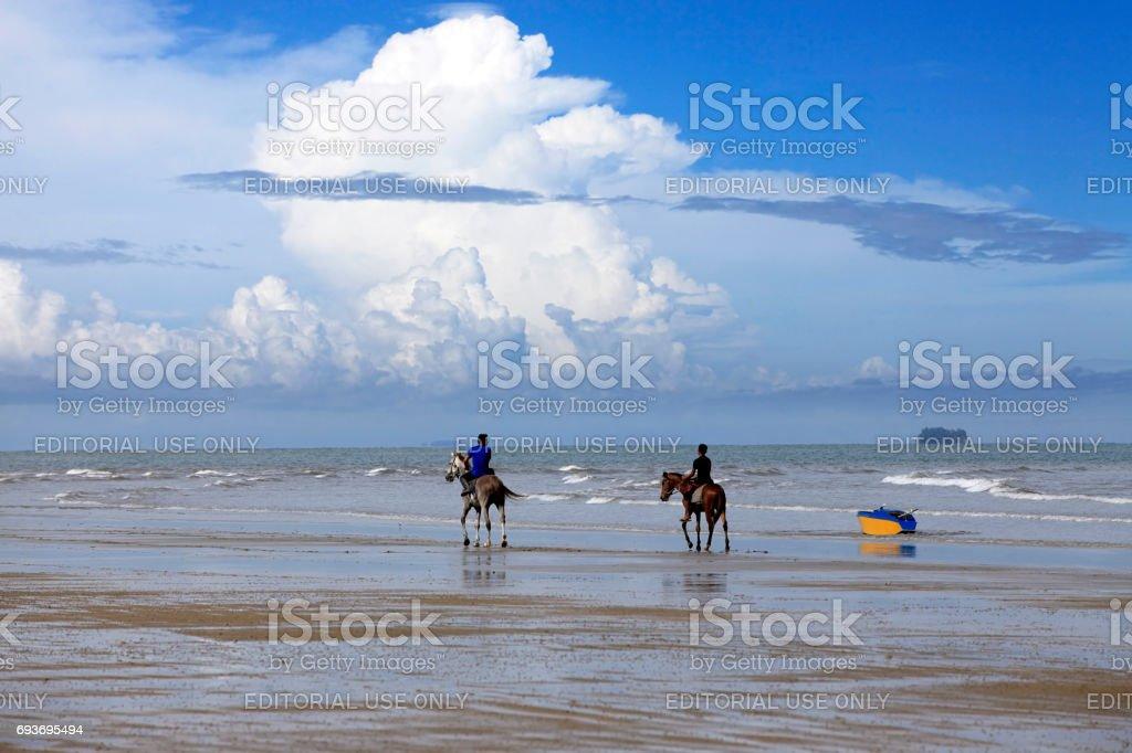 horse galloping on the beach Borneo stock photo