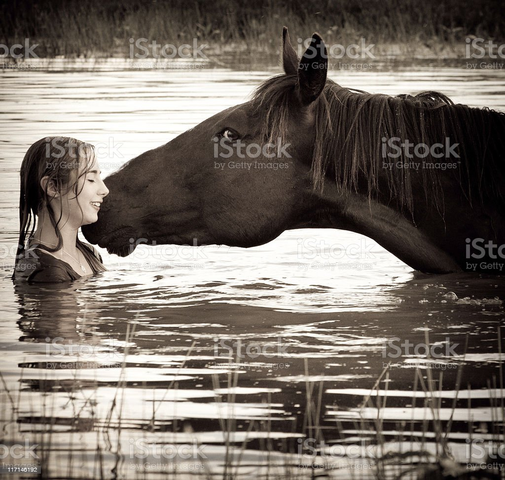 Horse Giving Affection To Girl stock photo