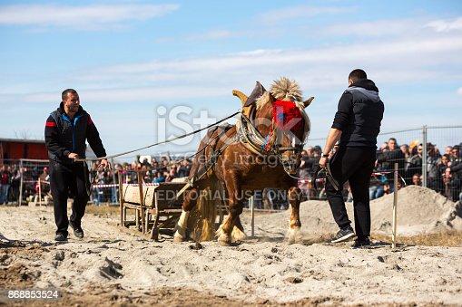 istock Horse heavy pull tournament 868853524