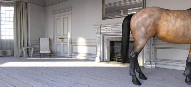 ein pferd in einem französischen chateau-schlafzimmer - pferde schlafzimmer stock-fotos und bilder