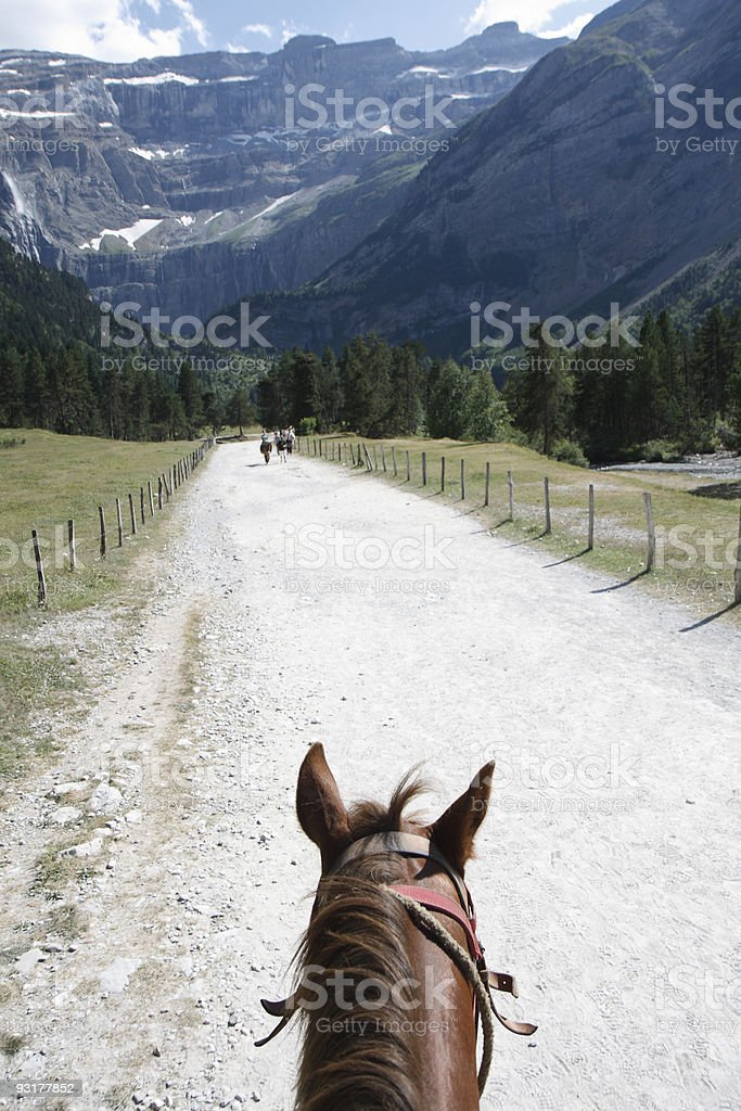 Horse in Pyren?es, France royalty-free stock photo