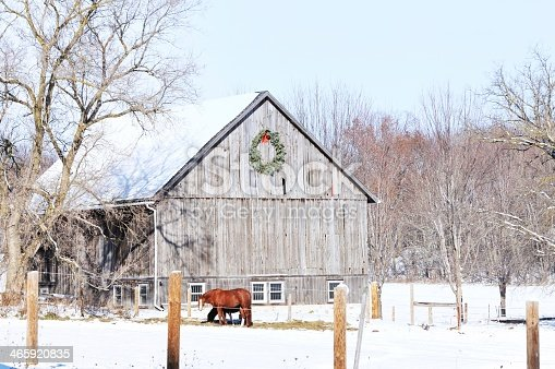Brown horse in corral by barn with wreath.
