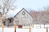 istock Horse in snow outside wooden barn with wreath on the side 465920835