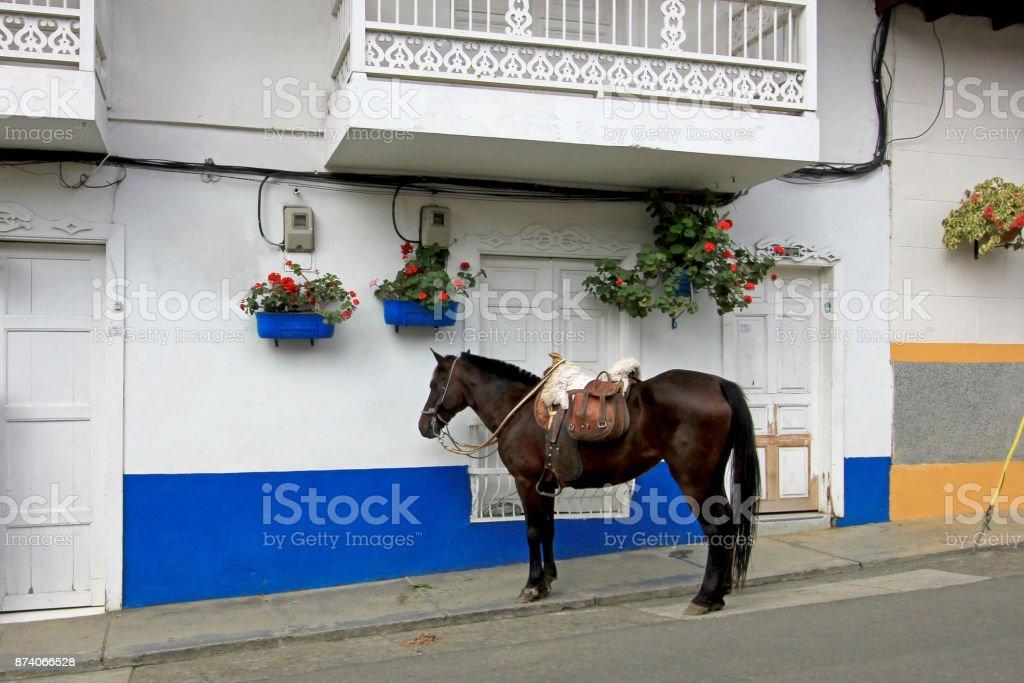 Caballo en las calles de la ciudad colonial El Jardin, Colombia - foto de stock