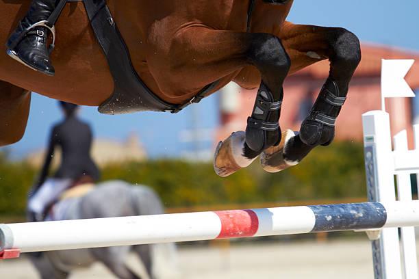 horse jump - hästhoppning bildbanksfoton och bilder