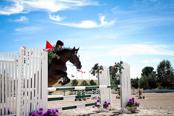 horse jumping competition - kellyjhall stock pictures, royalty-free photos & images