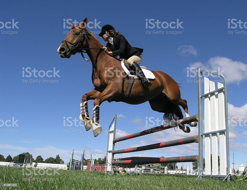 A horse jumping over a high jump in a competition royalty-free stock photo