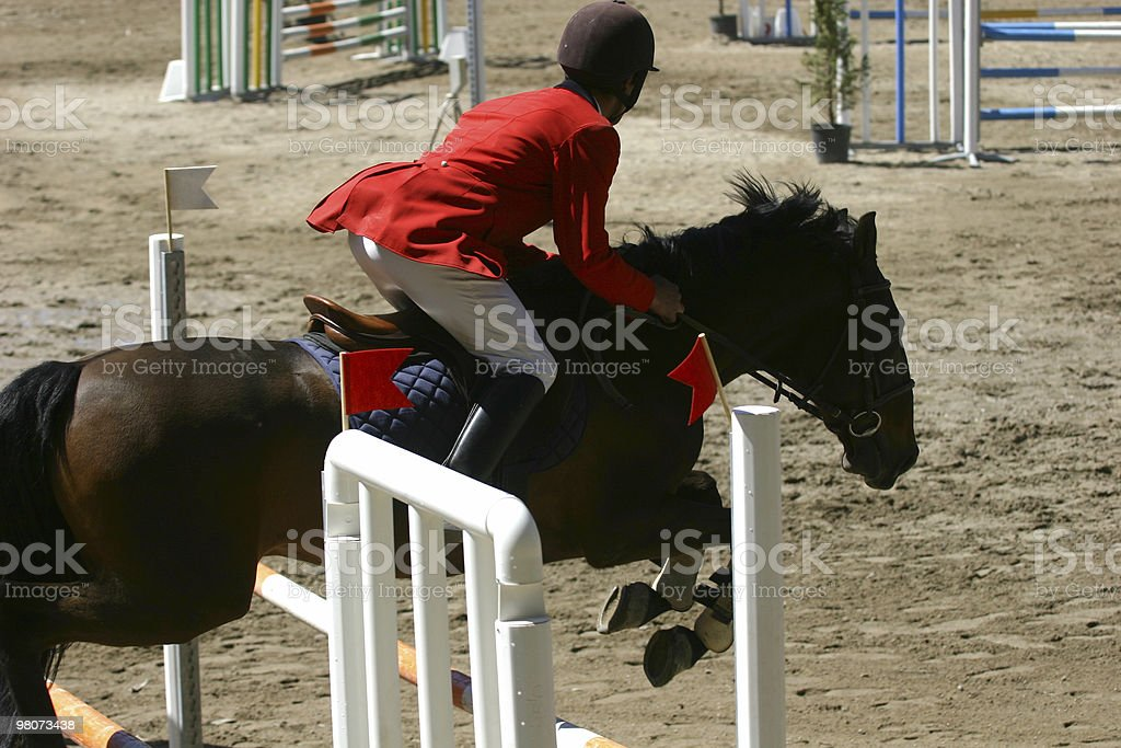 Horse Jumping royalty-free stock photo