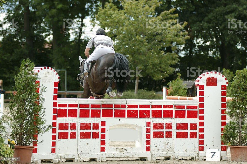 Horse jumping series royalty-free stock photo