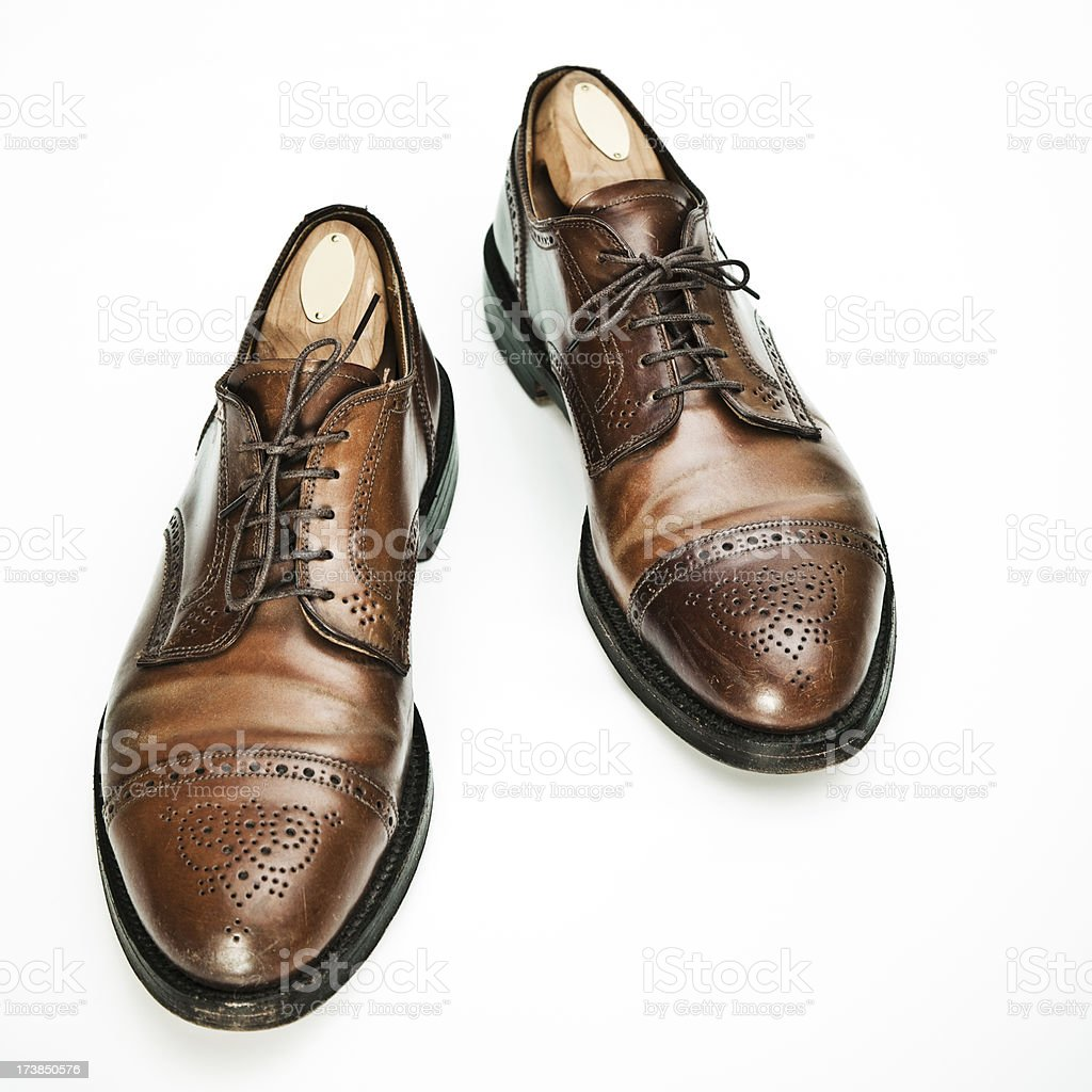 horse leather brogue stock photo