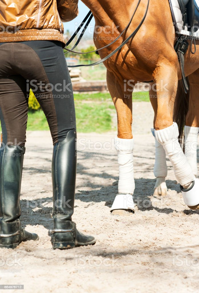Horse legs in bandages with riding leather horsewoman boots. Outdoors stock photo