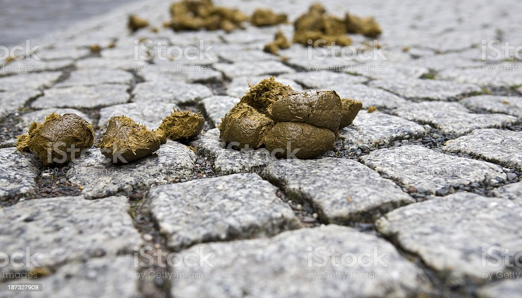 Horse manure royalty-free stock photo
