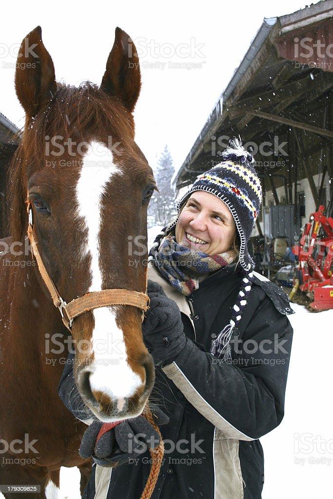 Horse named Winty stock photo