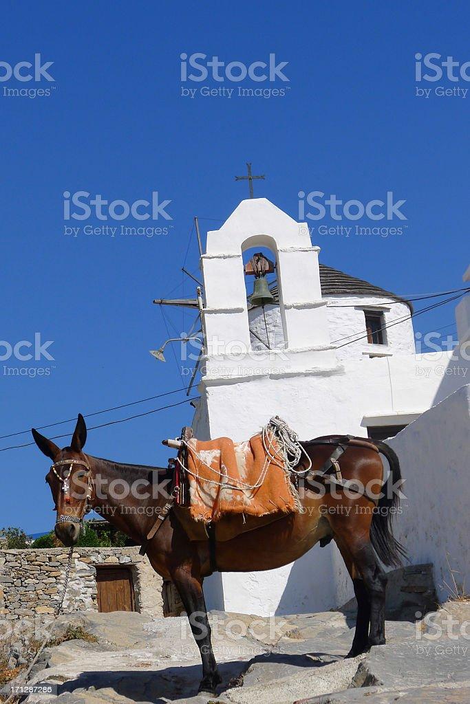 Horse on a Greek Island royalty-free stock photo