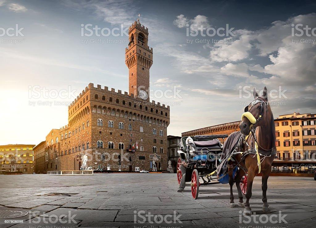 Horse on Piazza della Signoria stock photo