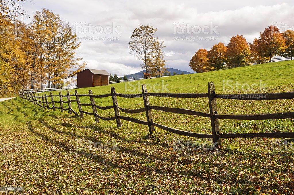 Horse Pasture stock photo