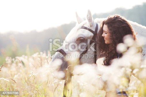 1128475475 istock photo Horse 477840195