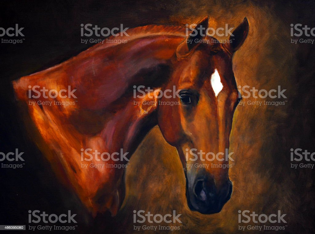 Horse portrait oil painting stock photo