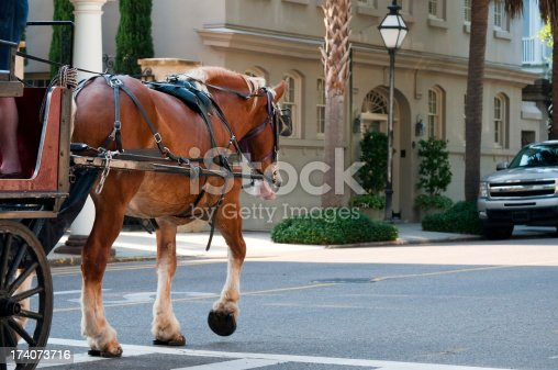 A horse pulls a carriage down a street in Charleston, South Carolina