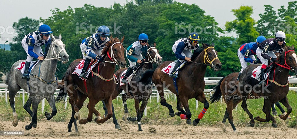 Horse race for the prize Jockey Cluba. stock photo