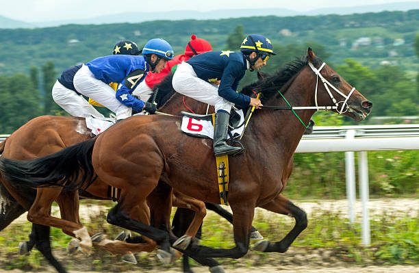 13 753 Horse Racing Stock Photos Pictures Royalty Free Images Istock