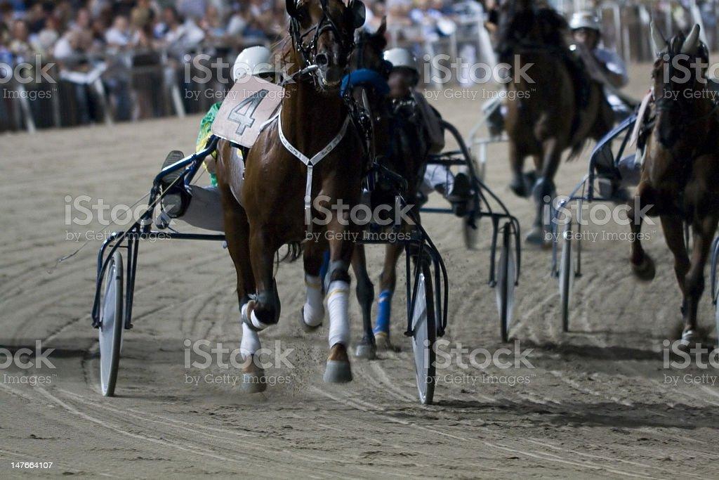 Horse race royalty-free stock photo