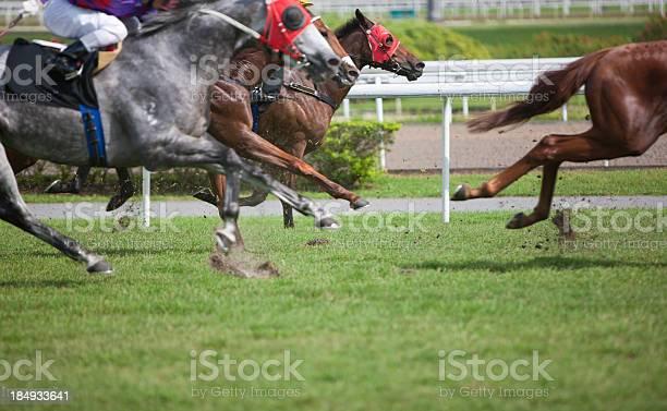 Horse race picture id184933641?b=1&k=6&m=184933641&s=612x612&h=31knqqbjtwg4xgpqwjgaqtp6egvedjx yy0base7q74=